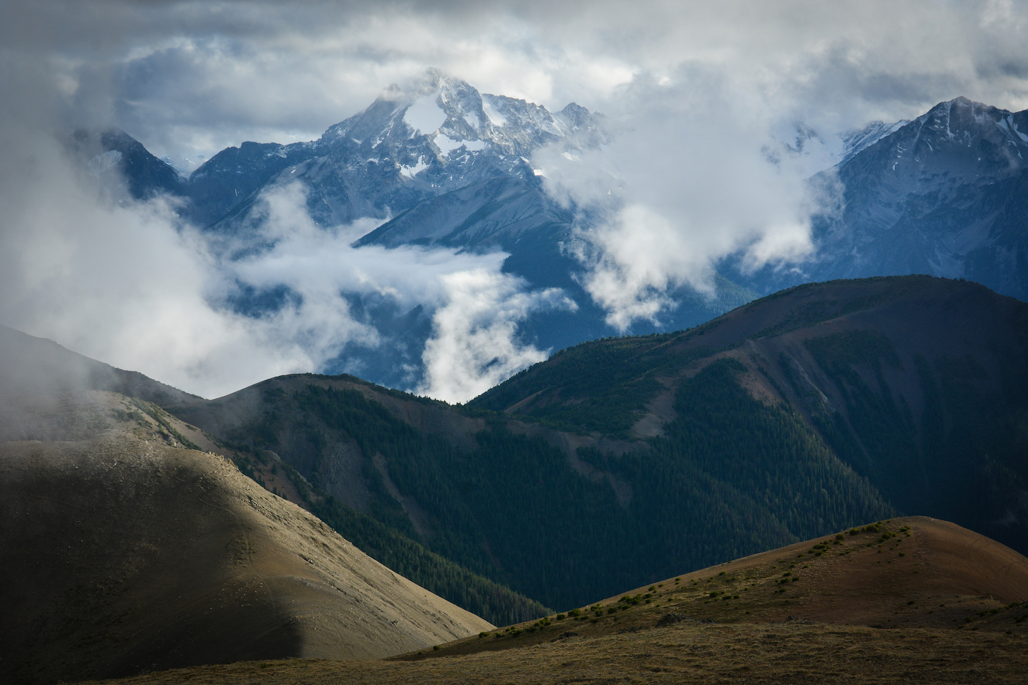 South Chilcotin Mountains Provincial Park. Photo: Stephen Hui