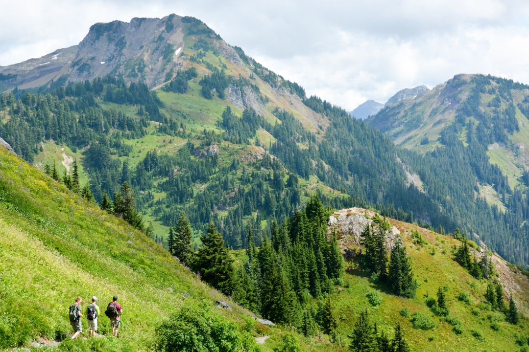 Yellow Aster Butte Trail. Photo: Stephen Hui