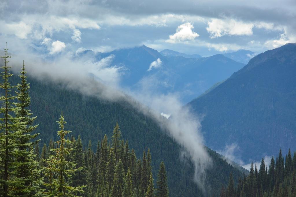Whatcom Trail. Photo: Stephen Hui